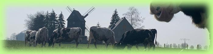 Agrargesellschaft Bad Lausick mbH